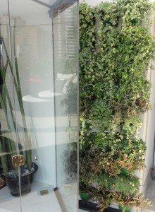 faça seu jardim vertical sem complicações no seu apartamento