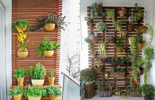 plantas e jardins ornamentais:Preparamos dicas de como utilizar plantas para compor jardins dentro e