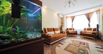decoracao-aquario
