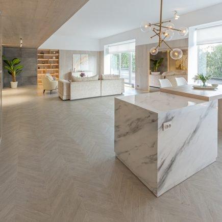 cozinha moderna com ilha de mármore e integrada com a sala